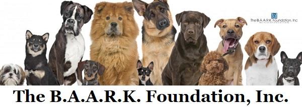 The Baark Foundation
